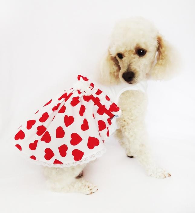 """Vestido """"Valentina"""" de algodón con falda de poplín estampada en corazones y detalles de flores de gasa y ruedo terminado en puntilla."""